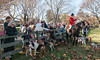 BEFORE THE THANKSGIVING HUNT, A CHANCE TO MEET HOUNDS AND RIDERS