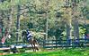 DRHC PC Horse Trials CX 4-18-15-4688