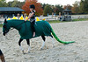 VHSA Silver Lining Horse Show 10-20-12-0589
