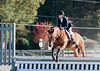 VHSA Silver Lining Horse Show 10-20-12-7663