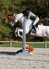 VHSA Silver Lining Horse Show 10-20-12-7651