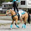 trick_rider 795