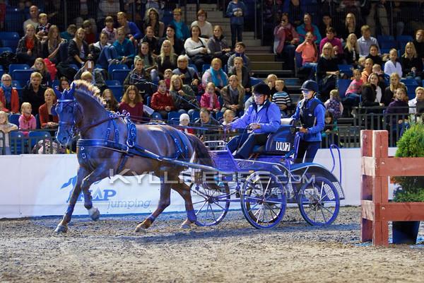 Rakendite show-v›istlus @ Tallinn International Horse Show 2014. Urmas Saks - Kelli ex Kris. Foto: Kylli Tedre / www.kyllitedre.com