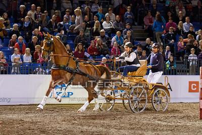 Rakendite show-v›istlus @ Tallinn International Horse Show 2014. Pille Oberpal - Armani, Urmas Raag. Foto: Kylli Tedre / www.kyllitedre.com