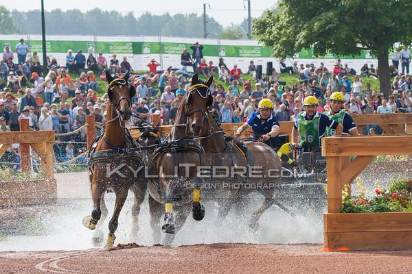 Driving Marathon @ Alltech FEI World Equestrian Games 2014, Normandy. MARTIN Fabrice FRA. Photo: Kylli Tedre / www.kyllitedre.com