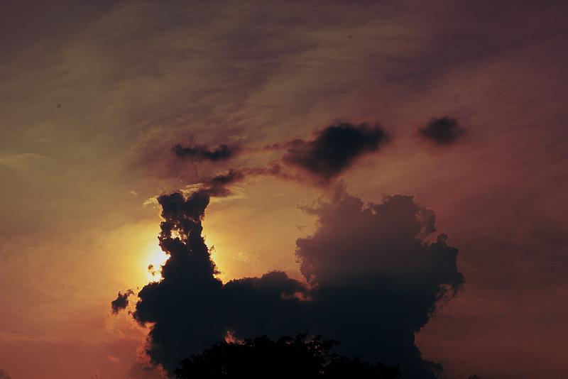 IMAGE: http://phlotography.smugmug.com/DRyan/Nature/Natural-World-2/i-M9ZZBSV/0/L/MG5553-nat-L.jpg