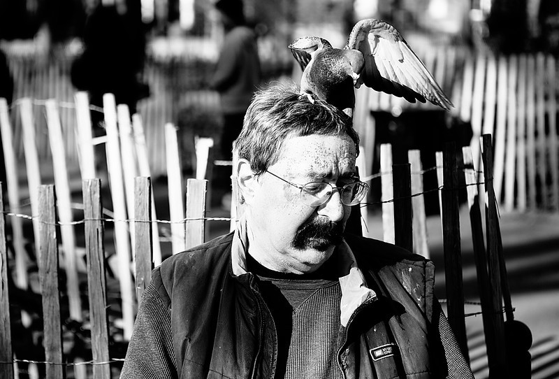 IMAGE: http://phlotography.smugmug.com/DRyan/New-York-City-2012/Occupy-Valentines-Day/i-7CD56RM/0/L/MG5775-wash-sq-L.jpg