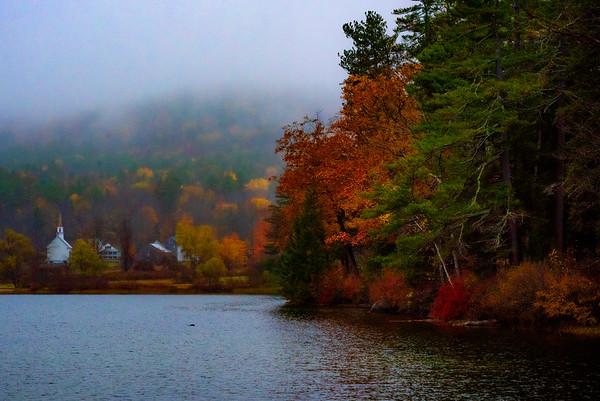 Foggy fall colors
