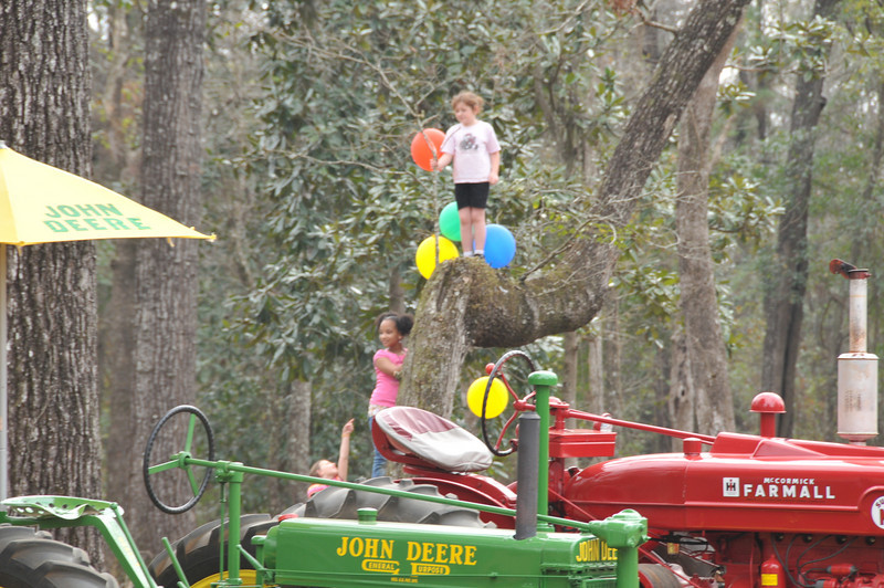 Wow, look at those kids up in the tree.  Great limb for a tree house