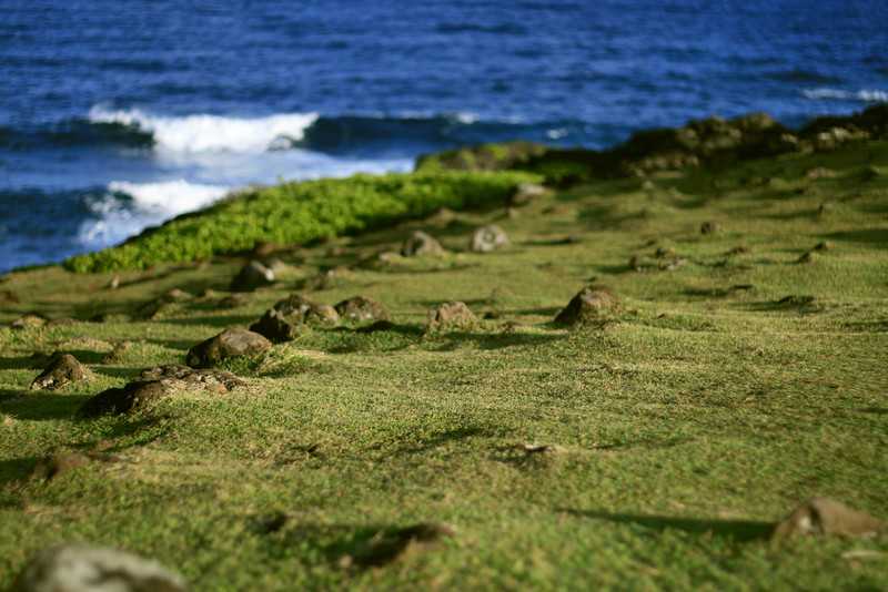 one of my favorite spots on maui, not sure who mows the grass though? menehune?  o'heo/kipahulu