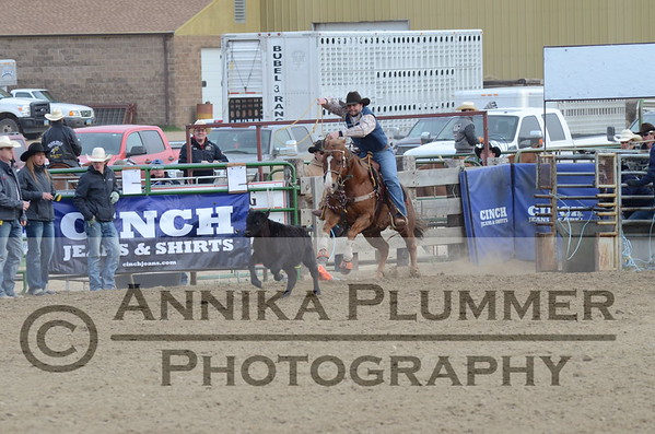 2015 DSU Rodeo - Sat Short Go - Tie Down Roping