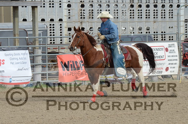 2015 DSU Rodeo - Sat Short-Go - Bareback