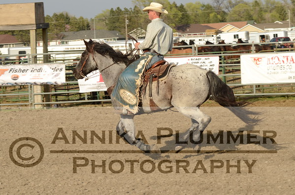 PERFORMANCE - DSU Rodeo - May 6, 2016