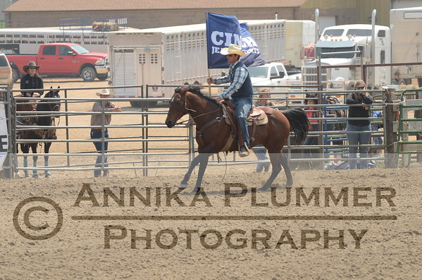 00 Flags - DSU Rodeo - Sat Perf