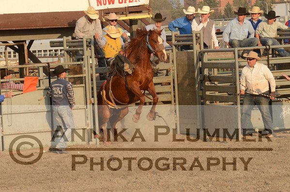 05 Saddle Bronc - DSU Rodeo Short Go