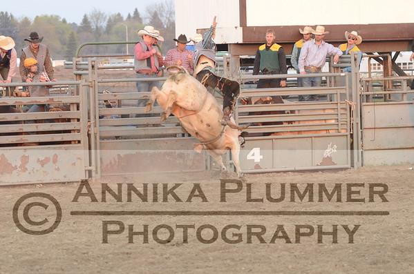 10 Bull Riding - DSU Rodeo Short Go