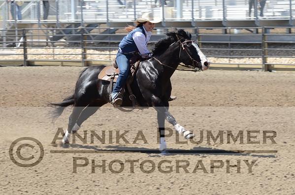 2017 DSU Rodeo