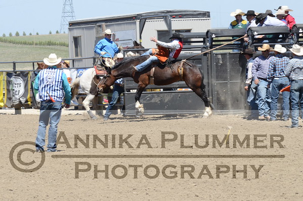 2017 DSU Rodeo-Saturday Performance