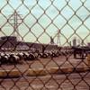 Hamilton  Steel Mill - Dofasco