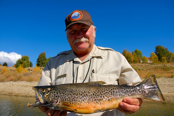 Utah Division of Wildlife Resources volunteer services coordinator, Randall Stilson holds a tiger trout that was captured at Scofield Reservoir during the semi-annual gill-netting survey conducted by the DWR.