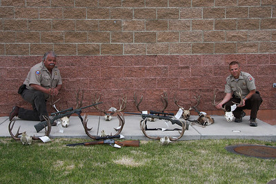 Utah Division of Wildlife Resources conservation officers Fred Pannunzio (L) and Micah Evans show some of the confiscated antlers and the guns used to kill poached animals.  Photo by Lynn Chamberlain, Utah Division of Wildlife Resources on 5-25-09.