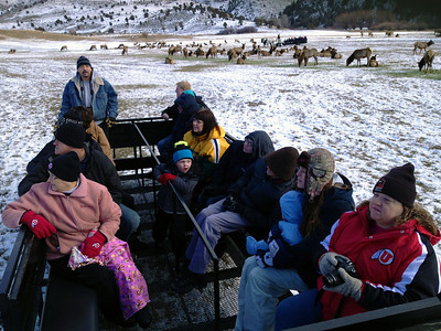 Visitors enjoy a wagon ride through the elk feeding grounds at Utah's Hardware Ranch. Photo by Phil Douglass, Utah Division of Wildlife Resources.