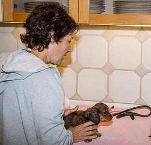 Dr. Jill Chase examines Jill.
