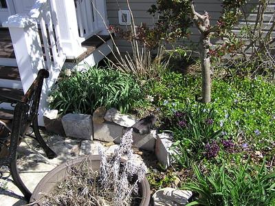 Hyacinth Additions