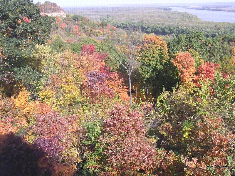 Autumn101805-2.JPG