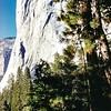 El Capitan, Yosemite NP, CA, October 1952
