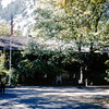 Administration Building, Yosemite NP, CA, October 1952