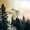 Forest Fire, Yosemite NP, CA, October 1952