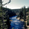 Lewis River, Yellowstyone NP, WY, September 1953