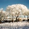 Pipestone NM, MN, December 1954