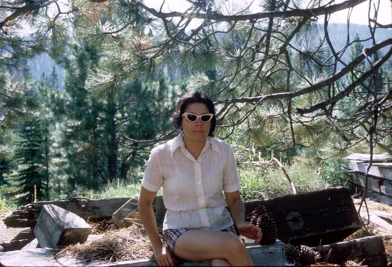 Near Stampmill, Plumas Eureka, August 1973.