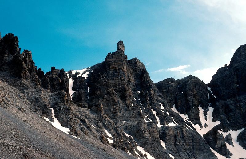 Wheeler Peak, Bristlecone Pine - Glacier Trail, 1978.