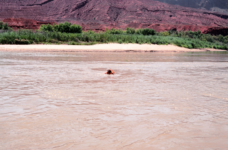 Swimming down the Colorado River on raft trip, 1978.