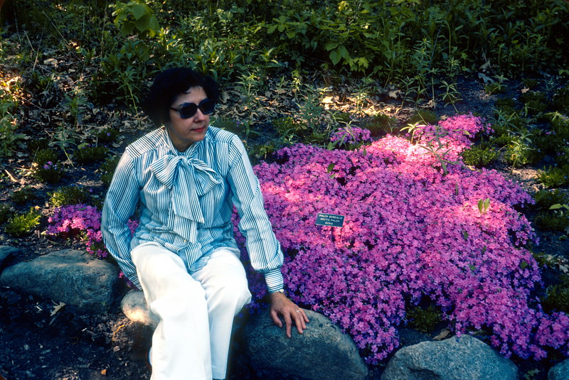 University of Minnesota, Gardens and Arboretum, 1978.