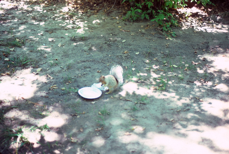 Campground visitor, Black Canyon Campground, New Mexico, 1978.