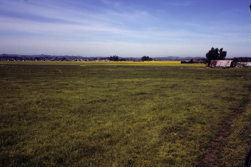 Sonoma County Near Petaluma, 1978.