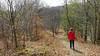 9 km. skovtur i Forêt de Chaux