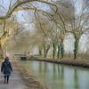 elsker at gå langs kanalen under de gamle træer... på alle årstider