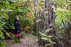 herlig tur i Auderød Skov