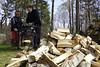 Årets obligatoriske kløvning af vinterens væltede træer..