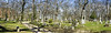 Forest Hill Cemetery panorama