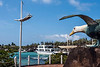 A statue of a blue-footed booby watches over the port area of Puerto Ayora, Santa Cruz Island, Galapagos Islands.<br /> <br /> DP013-2014  Posted January 13; processed ditto<br /> The Darwin Research Station is in Puerto Ayora, which is why our cruise ship stopped here.<br /> <br /> Another of my old trip photos that are just now seeing the light of day.  Taken May 22, 2009