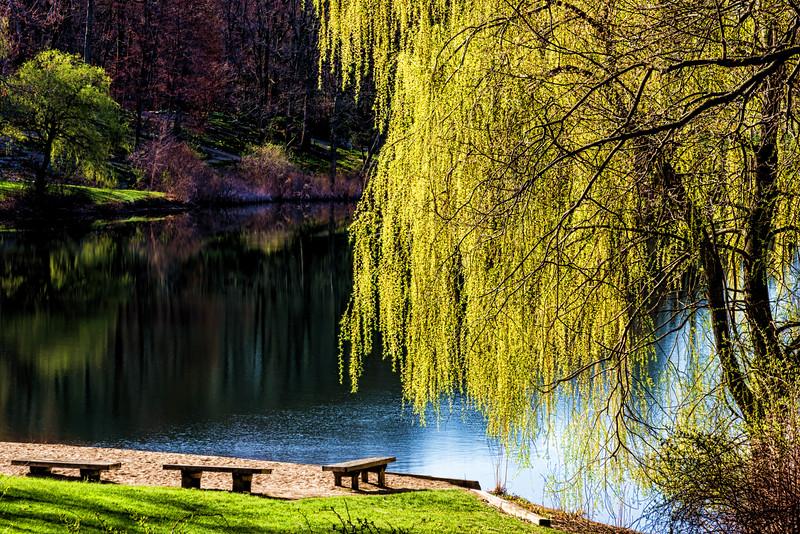 Enhancement of the light - Spring morning at Hidden Lake