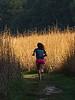Just how tall is 'tallgrass prairie' grass?  Way taller than a person.
