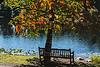 Fall - Season for Serenity