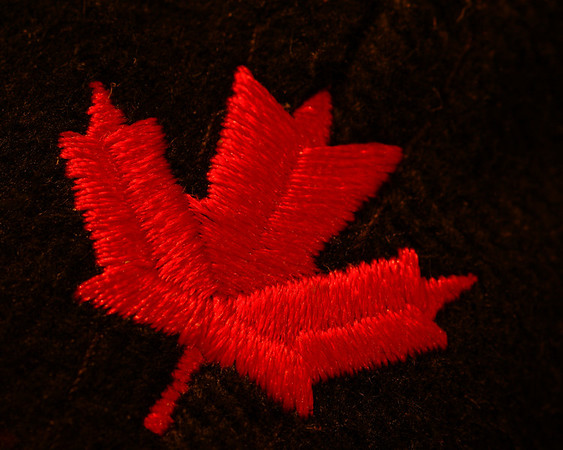 2012110 138/365 Jan 21/10 Oh Canada, eh.<br /> <br /> A macro of a small maple leaf embroidered on the back of a cap.